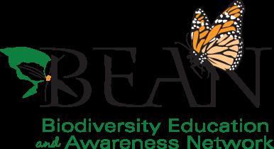 BEAN logo