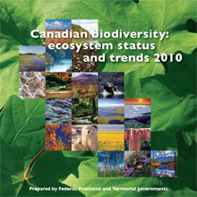 Cover of 2010 Ecosystem Status and Trends report