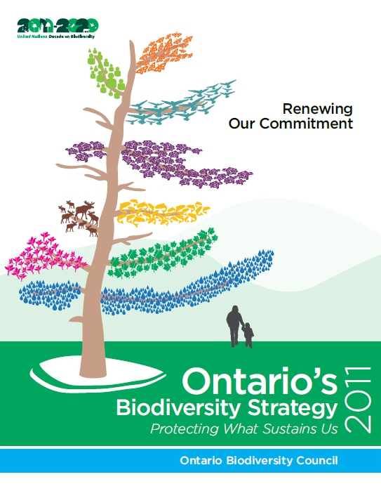 Cover of Ontario's Biodiversity Strategy 2011