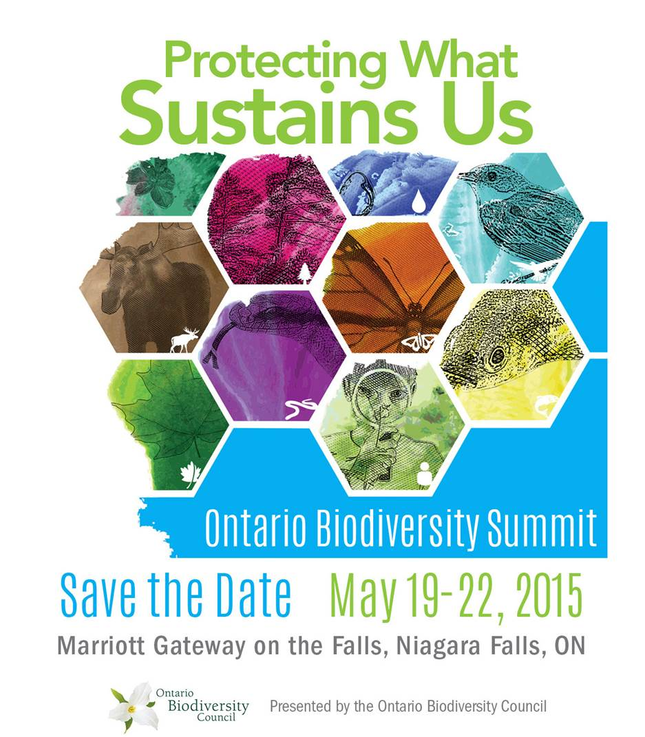2015 Ontario Biodiversity Summit promotional card